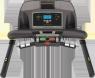 Беговая дорожка LiveStrong LS9.9T